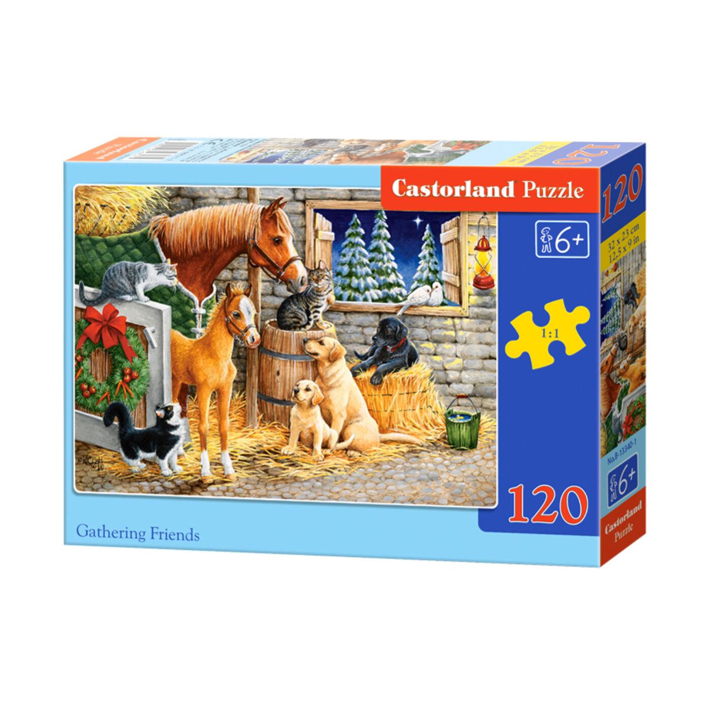 120 db-os Castorland Puzzle - Baráti gyűlés