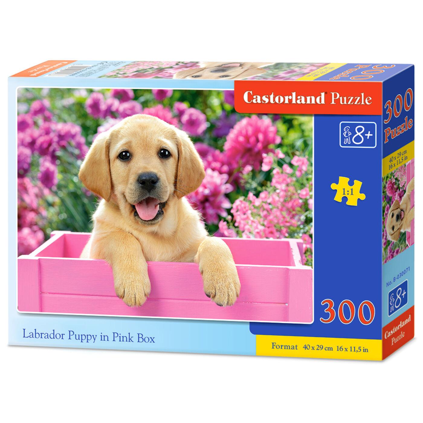300 db-os puzzle - Labrador kölyök pink ládában