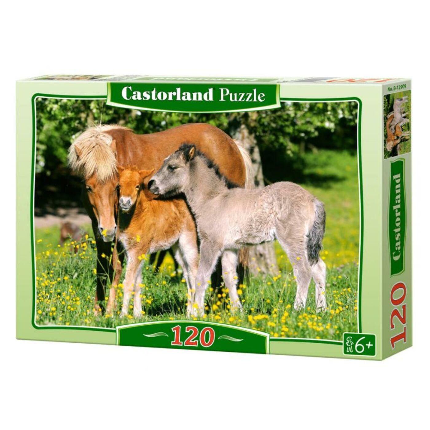 120 db-os Castorland puzzle - Pónik a réten