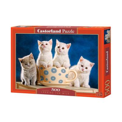 500 db-os puzzle - Tej
